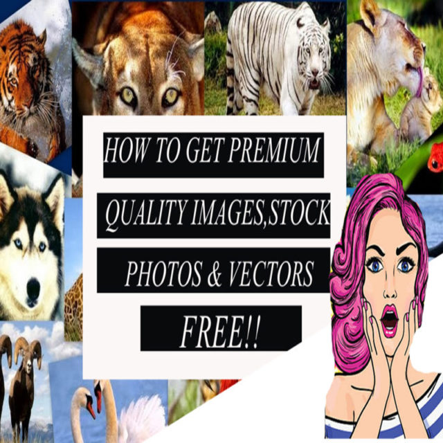 How to Get Premium Quality Images, Stock Photos & Vectors