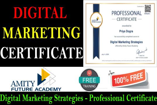 Free Digital marketing Certificate Amity Future Academy - amit university
